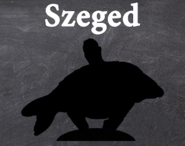 Szegedi workshop - módosult a helyszín
