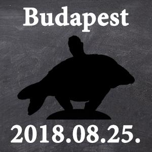 Workshop - Budapest - 2018.08.25. 15:00 - Workshop - Budapest - 2018.08.25. 15:00