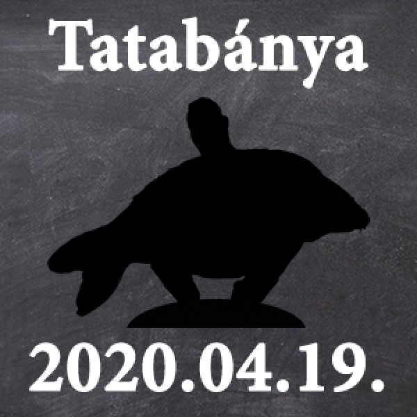 Workshop - Tatabánya - 2020.04.19. 09:00 - Workshop - Tatabánya - 2020.04.19. 09:00